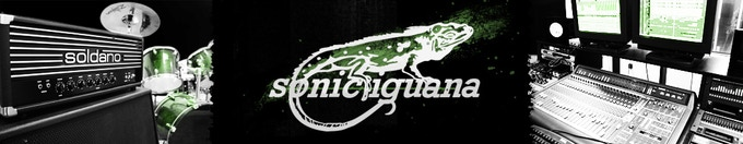 Sonic Iguana Studios: Specialized in Punk Rock since 1991.