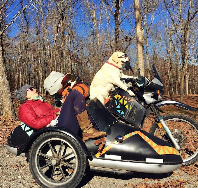 Operation Moto Dog: A Sidecar Adventure