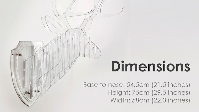 Clear Deer Dimensions
