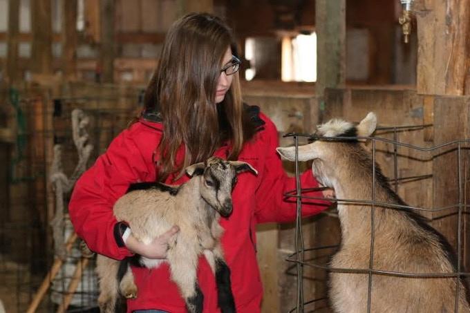 Goatherder-to-be, Leah Sienkowski