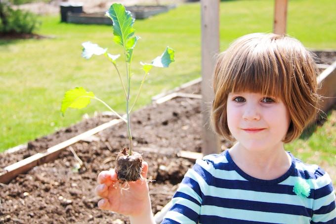 Kids love watching their plants grow!