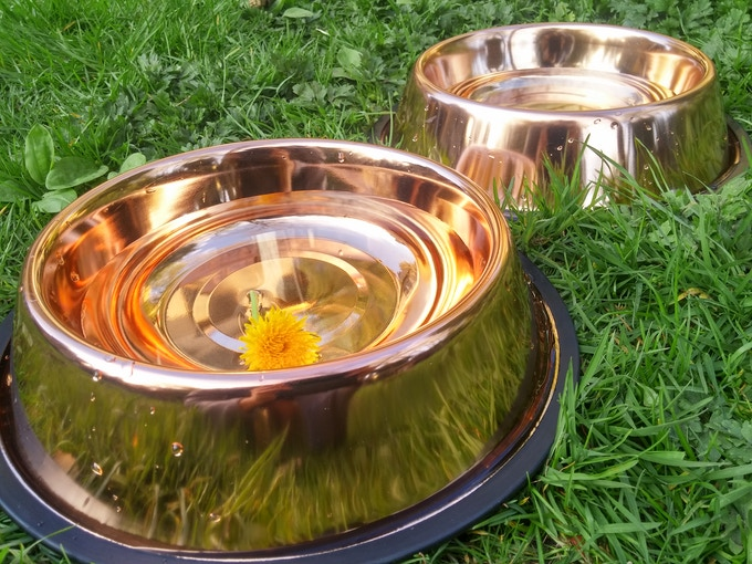 CuBowls in the sun
