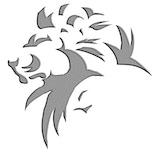 Platinum Lion Group