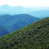 Appalachian Records