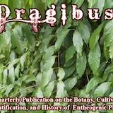 Dragibus Publishing
