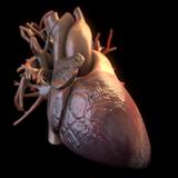 Heartcore Games