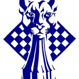 Blue Panther LLC