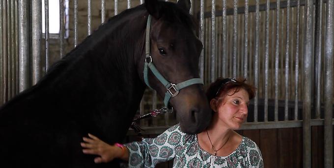 """Claudia Swierczek beim Kauf eines neuen Pferdes: """"Die Pferde tragen so viel von uns Menschen"""""""