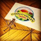 Coalo Valley Farms, LLC