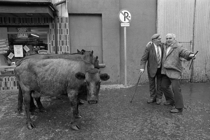 PRINT E Puck Fair, Killorglin, Co. Kerry, 1989.