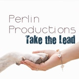 Perlin Productions, LLC