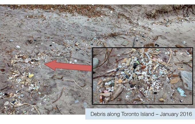 Debris along Toronto Island