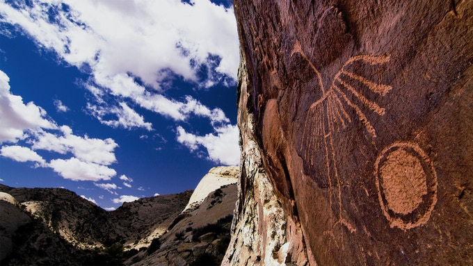 Crane Petroglyph photo credit: Josh Ewing