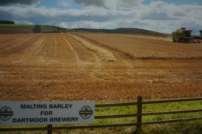 Where our Barley is grown in Princetown, Dartmoor