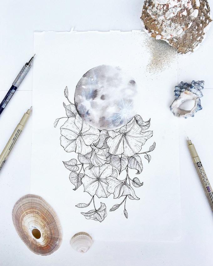 """Moon Flower: Ipomoea alba"" for postcard print"