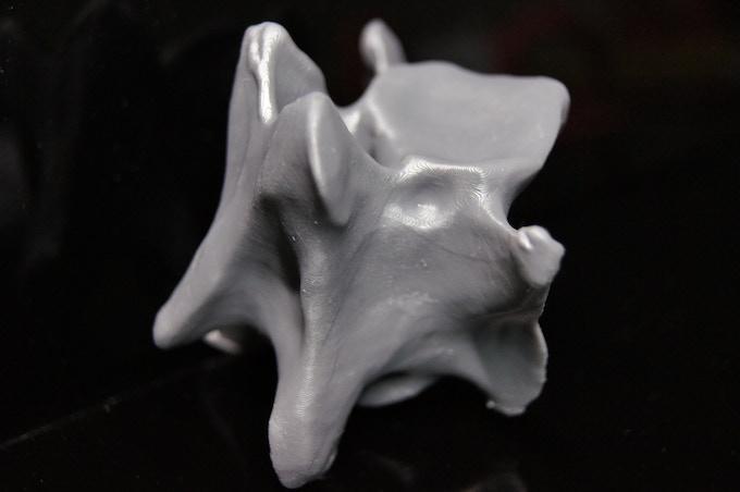 Neck Vertebr by JulPal (x, y 63um, z 40um)
