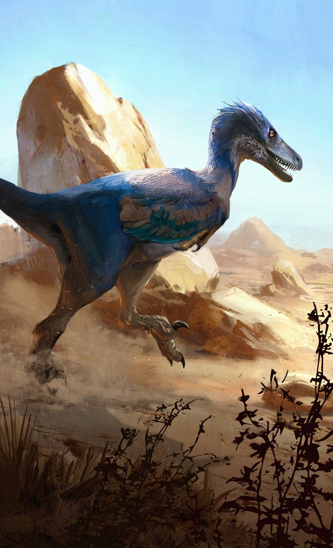 'Velociraptor osmolskae package art by Jonathan Kuo'