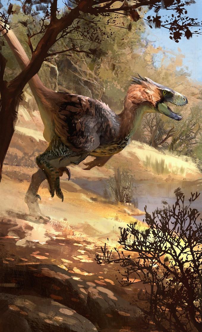 'Adasaurus package art by Jonathan Kuo'