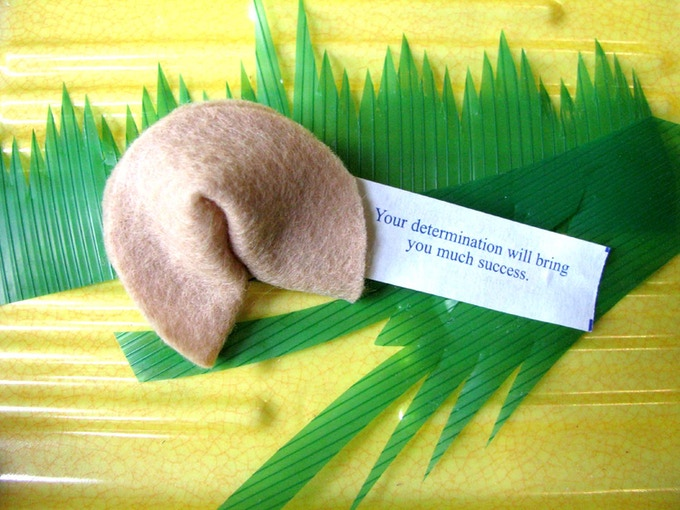 3D Plush Fortune Cookie w/Custom Fortune