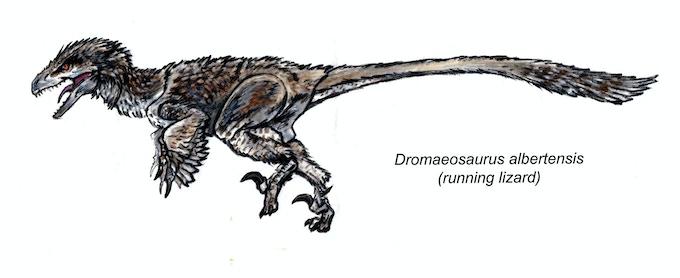 'Dromaeosaurus action figure concept art'