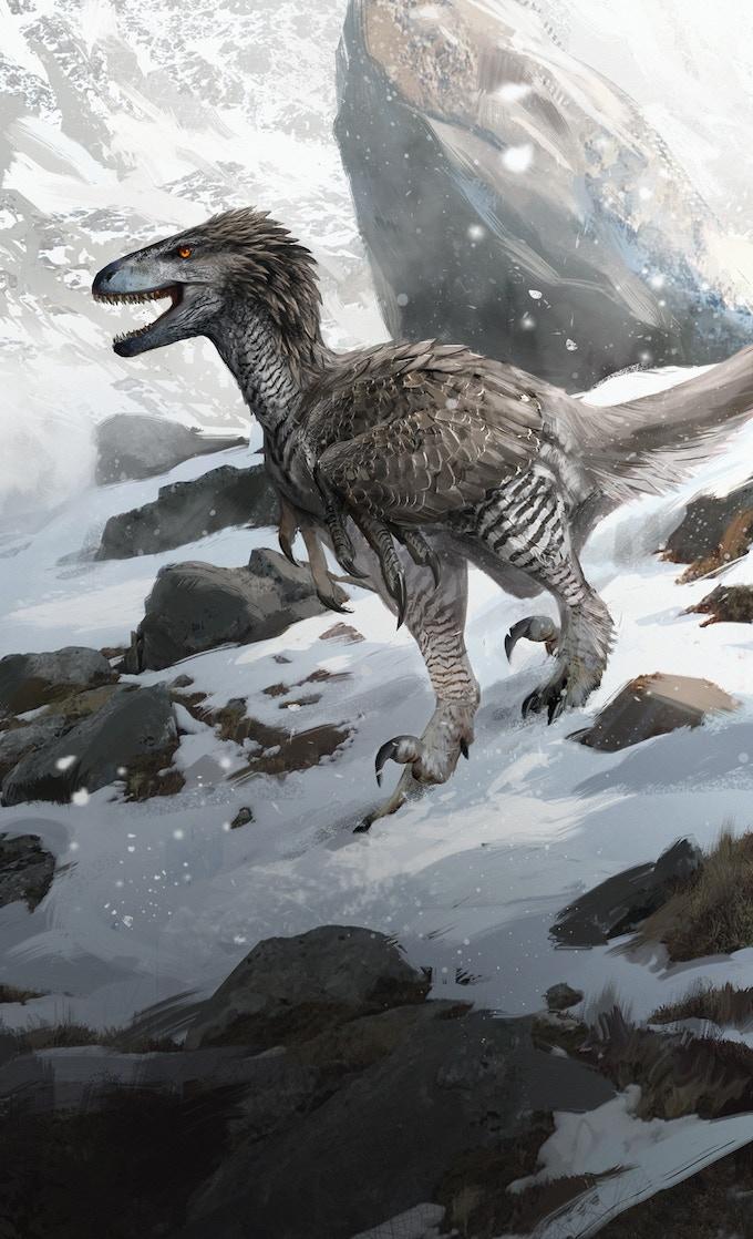 'Dromaeosaurus package art by Jonathan Kuo'