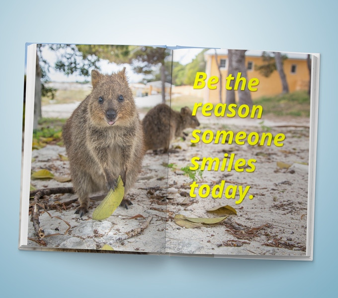 Quokka Photo Book - Example page