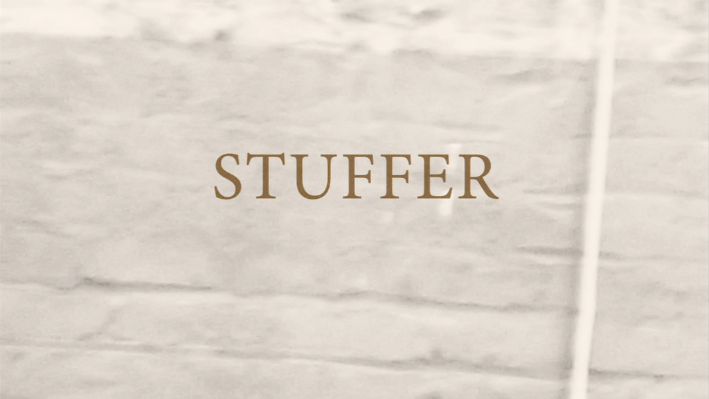 STUFFER project video thumbnail