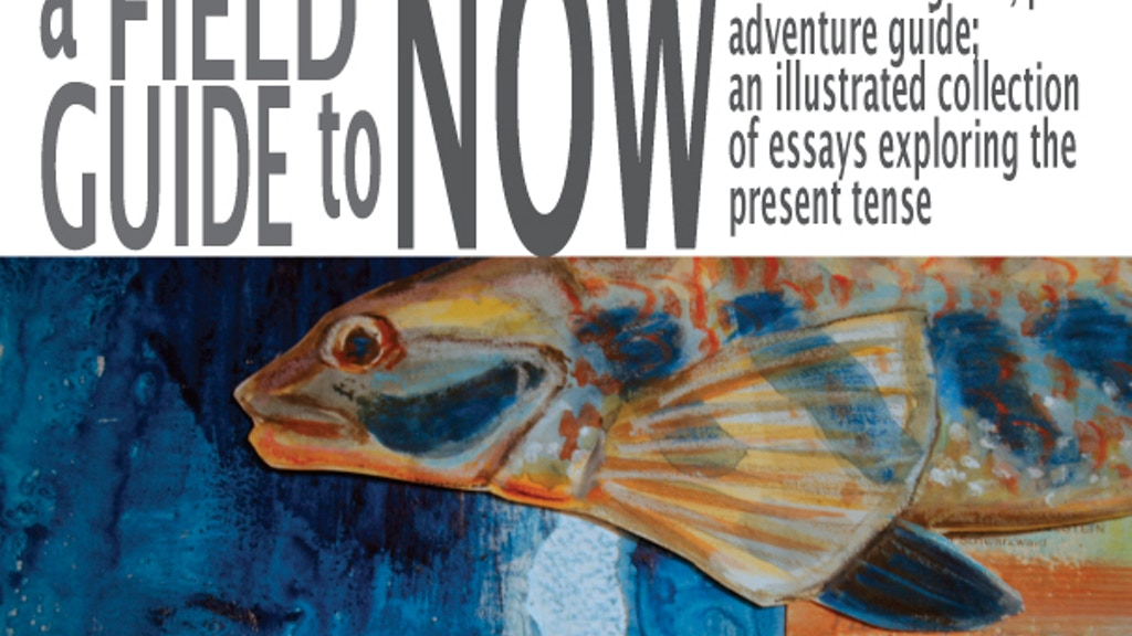 A Field Guide To Now: An Illustrated Collection of Essays and Prose  project video thumbnail