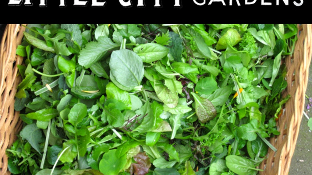 Little City Gardens: An experiment in the economic viability of urban farming project video thumbnail