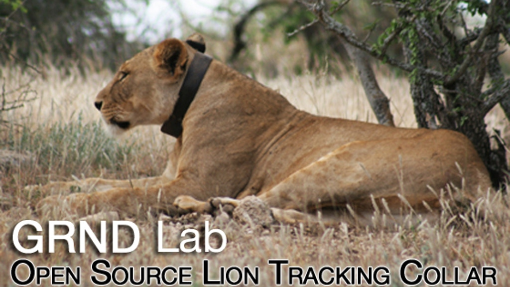 Open Source Lion Tracking Collars project video thumbnail
