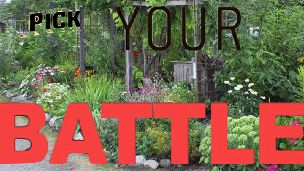 Pick Your Battle - (foraging as revolutionary self-help) project video thumbnail