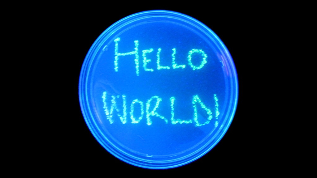 """""""Hello, World!"""" - Modern Biotechnology for High Schools project video thumbnail"""