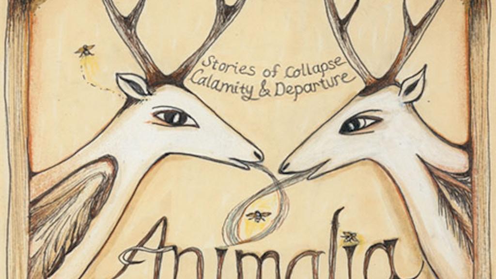 Animalia Animation project video thumbnail