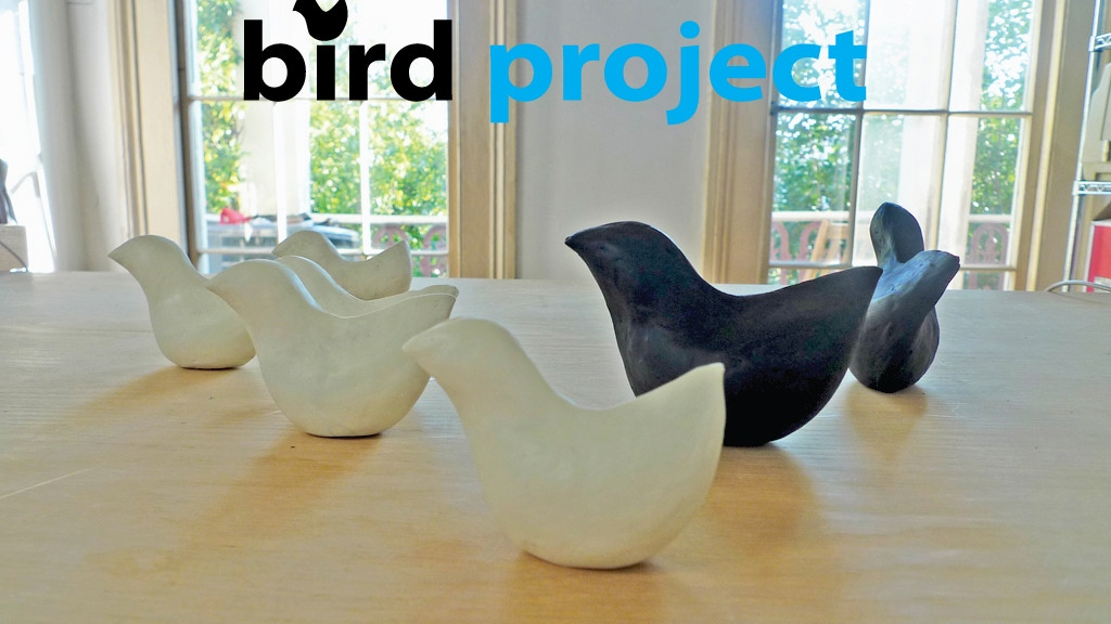 BirdProject: Biodiesel Glycerin Soaps for BP Oil Spill Cleanup project video thumbnail