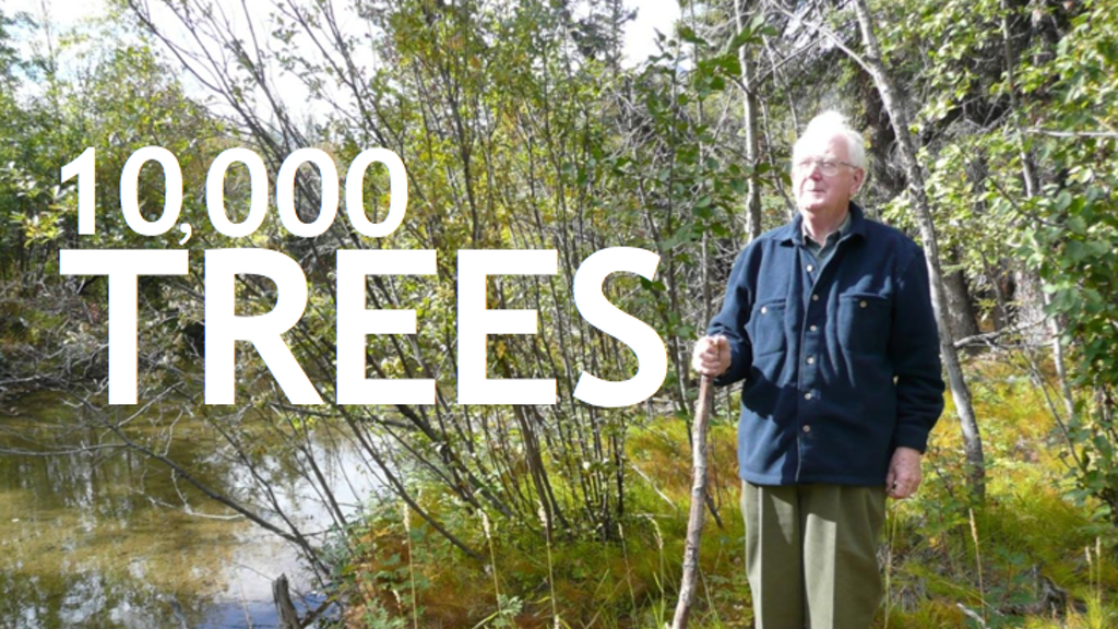 10,000 Trees: help a short documentary grow tall. project video thumbnail