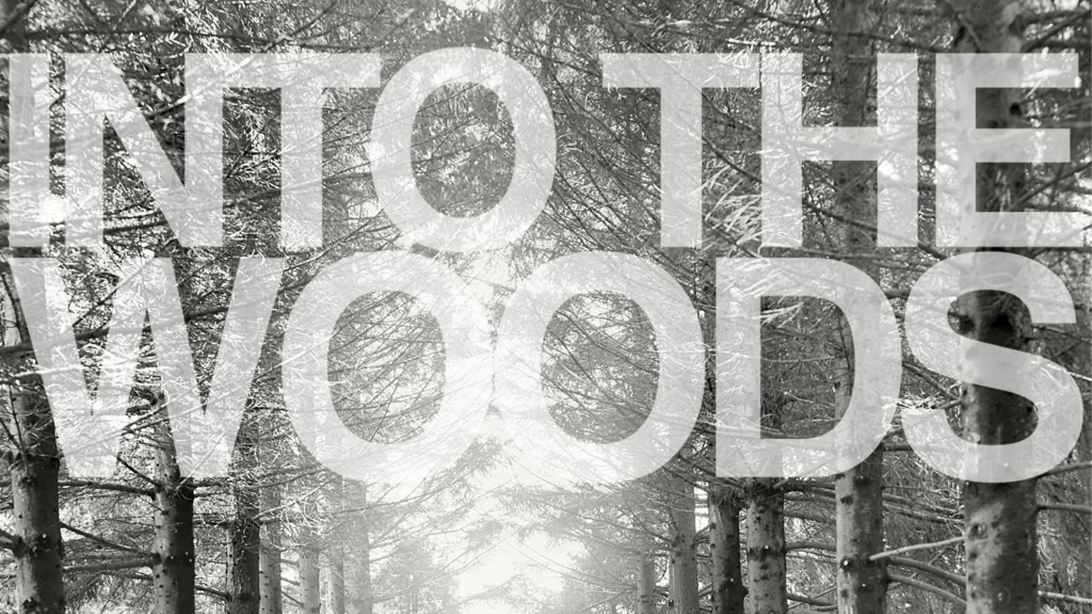 Intothewoods Music Media From The Pacific Northwest By