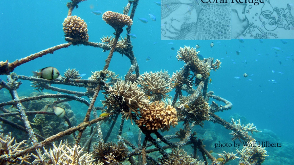 Living Sea Sculpture: contemporary art as coral refuge project video thumbnail
