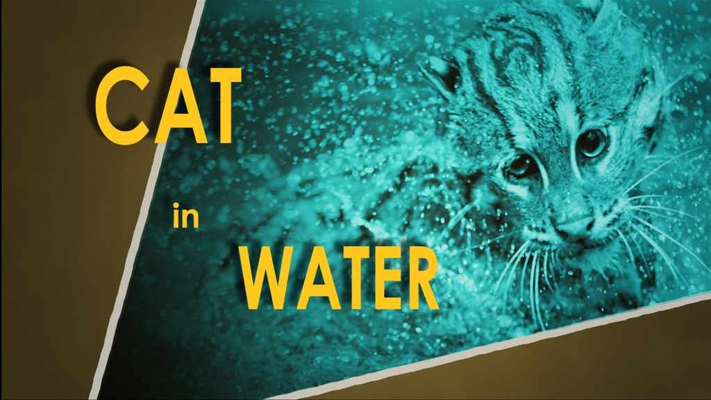 CAT in WATER project video thumbnail