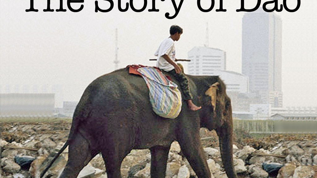 The Story of Dao -- raise awareness for elephants thru film project video thumbnail