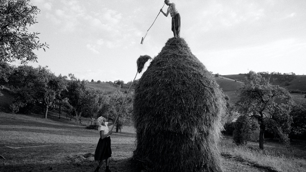 Project image for Maramures-Europe's Last Peasants - Book Project