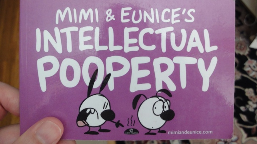 Mimi & Eunice's Intellectual Pooperty minibooks project video thumbnail