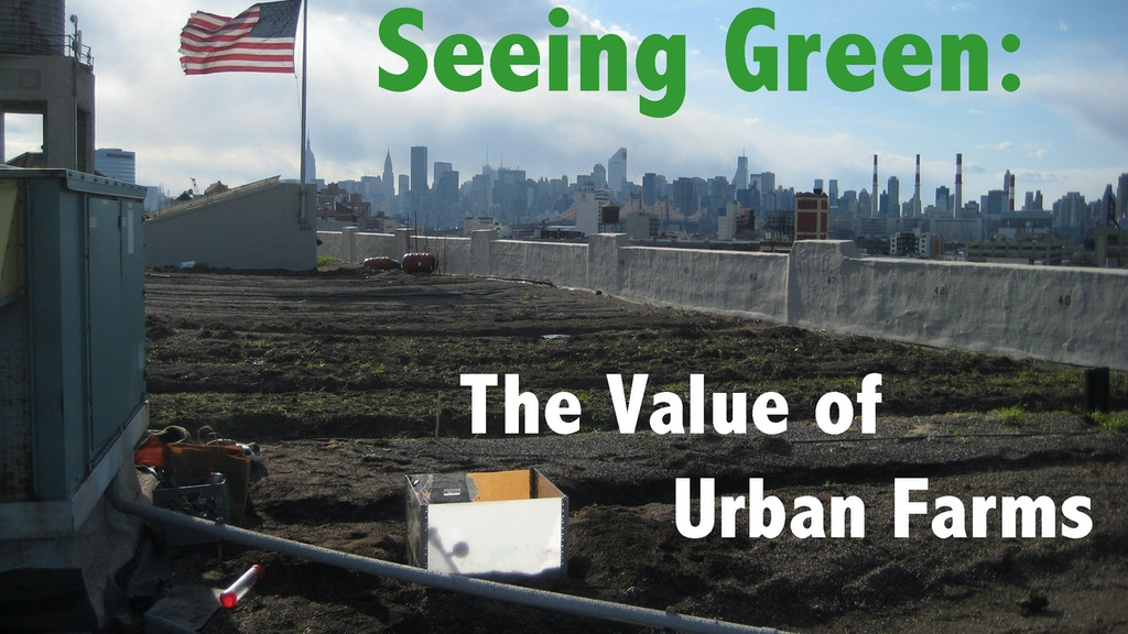 Seeing Green: The Value of Urban Farms project video thumbnail