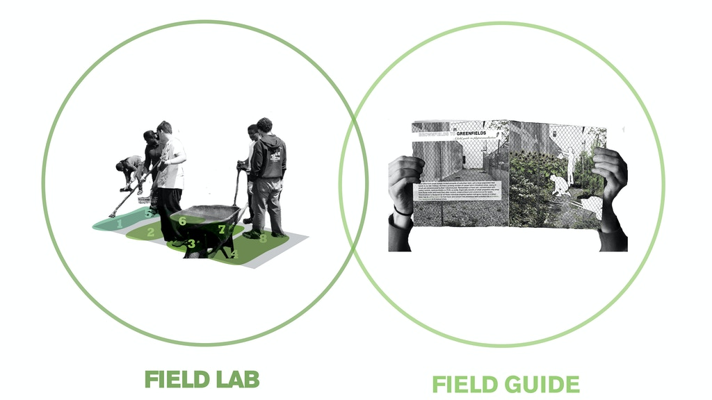 Field Guide to Phytoremediation project video thumbnail
