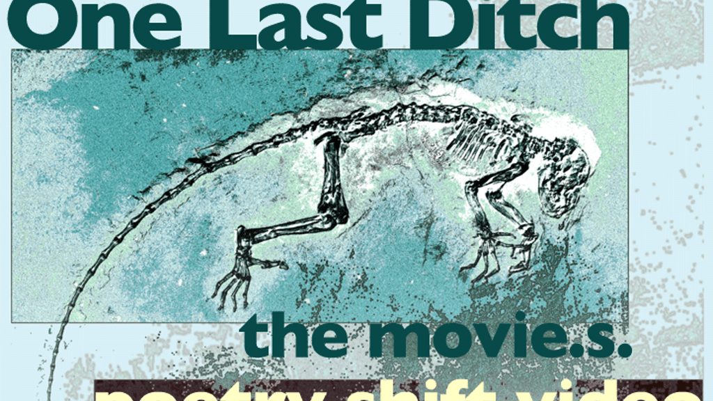 One Last Ditch: the movie. project video thumbnail