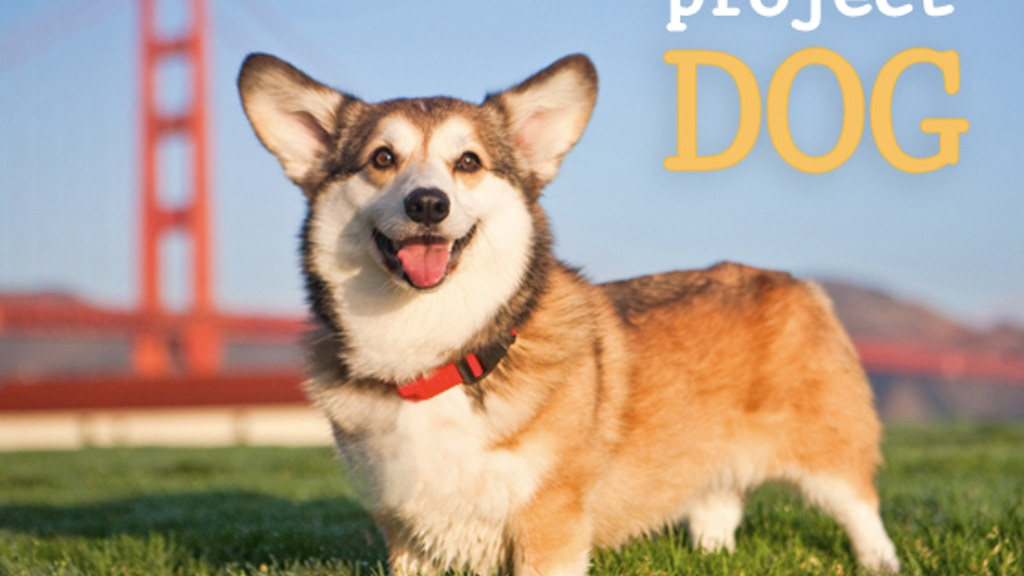 Project DOG project video thumbnail