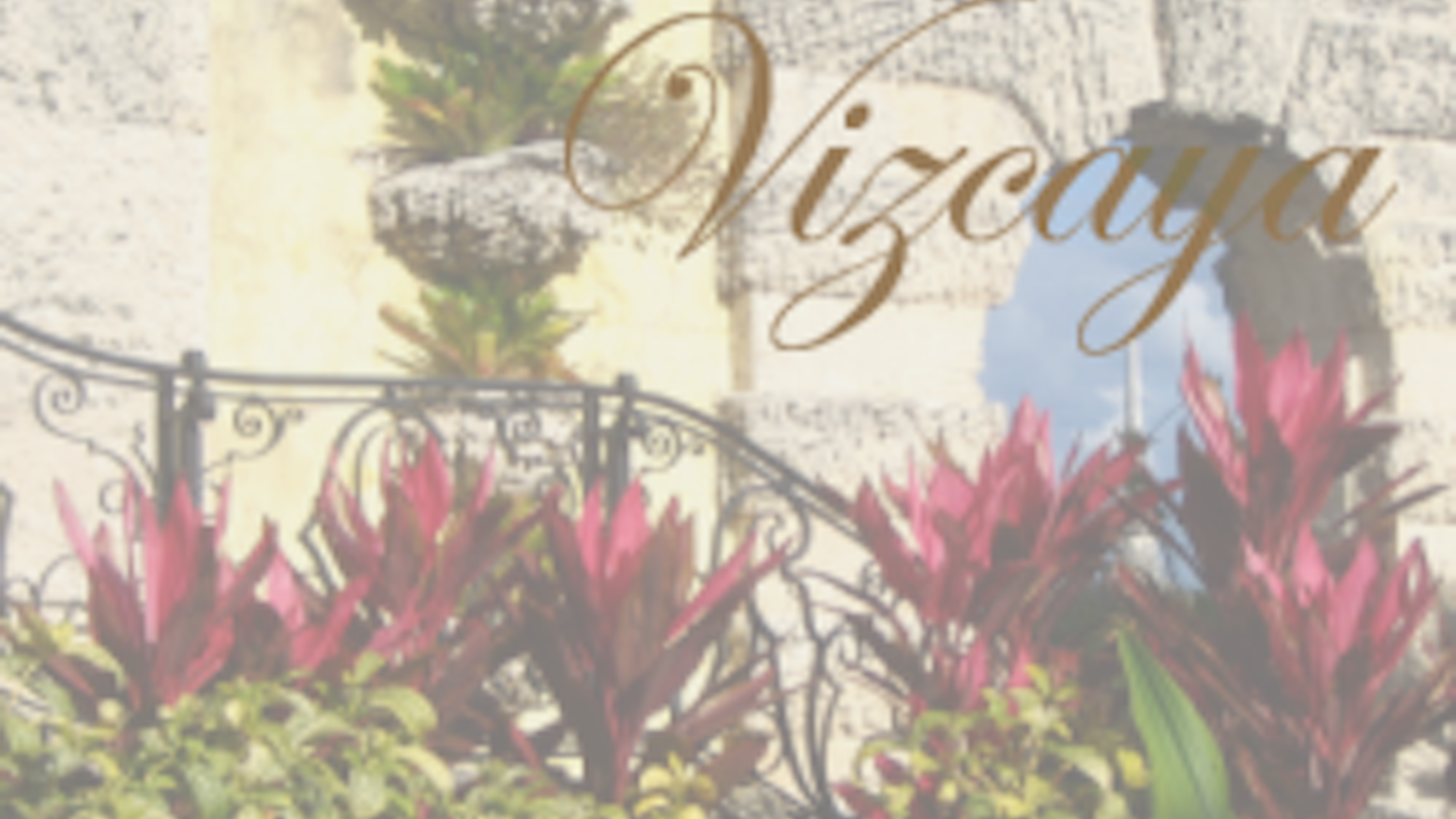 Vizcaya A Young Adult Novel By Lina Endings Are Never Simple