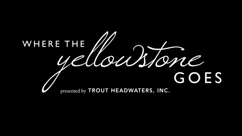 Where The Yellowstone Goes project video thumbnail