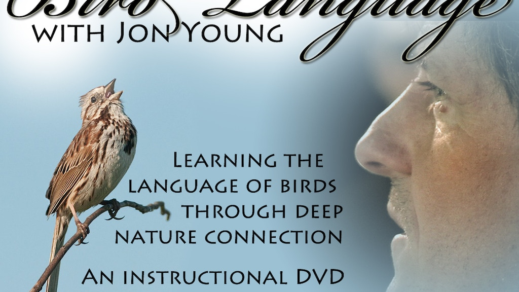 Bird Language with Jon Young; an instructional video project video thumbnail
