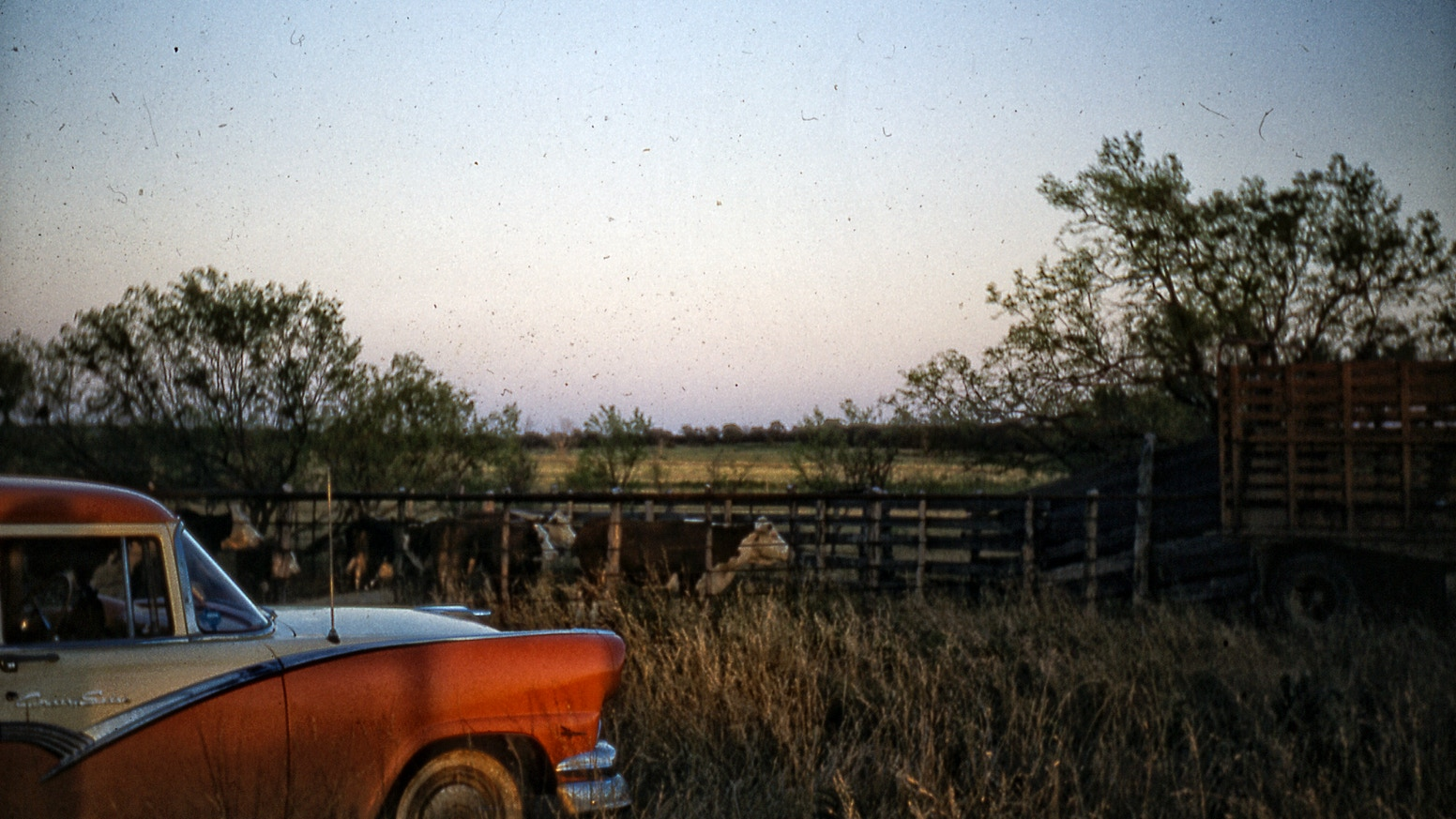 West Texas Interlude: Photos and Stories from the Desert by