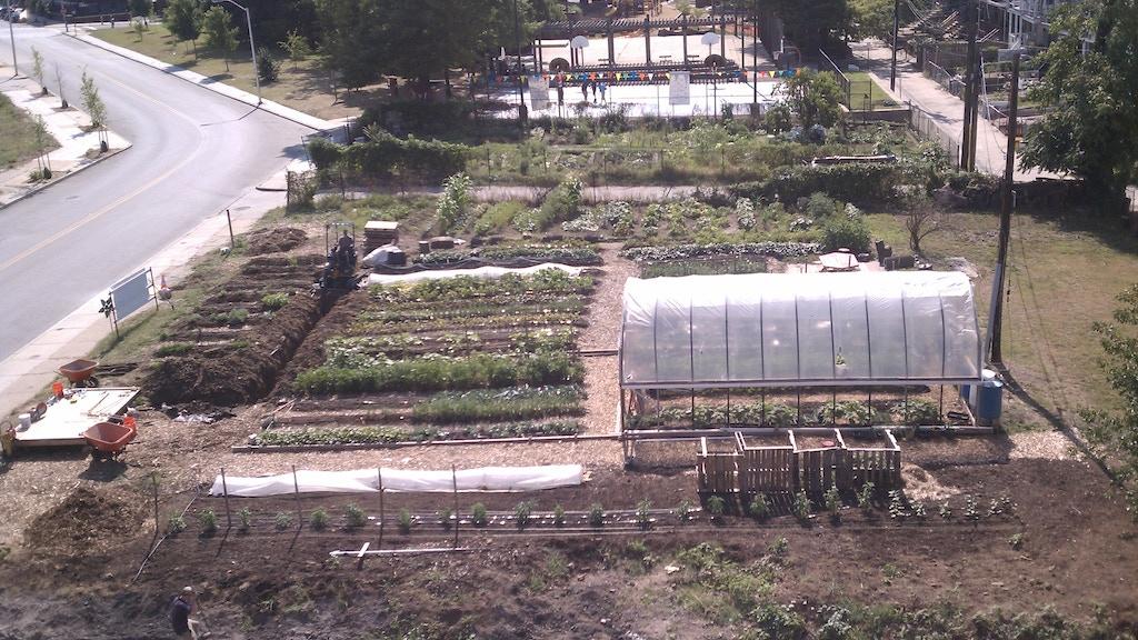 Whitelock Community Farm project video thumbnail